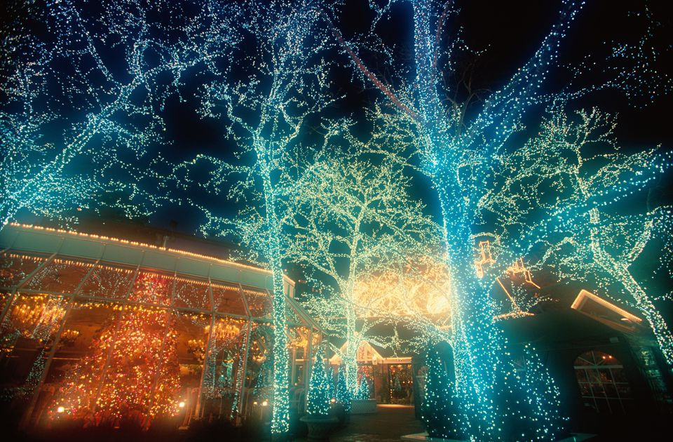 stromy osvetlenie
