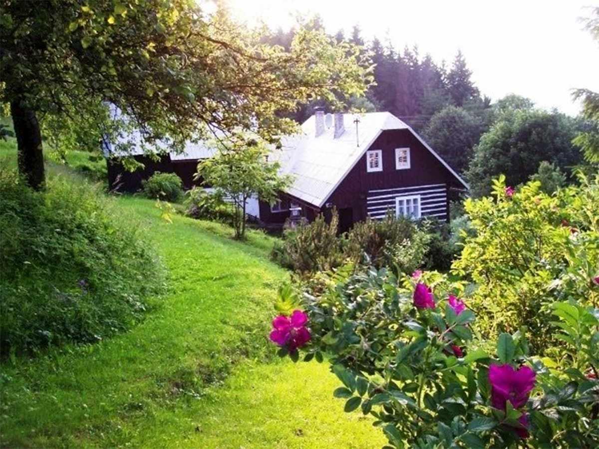 drevená chatka medzi stromami