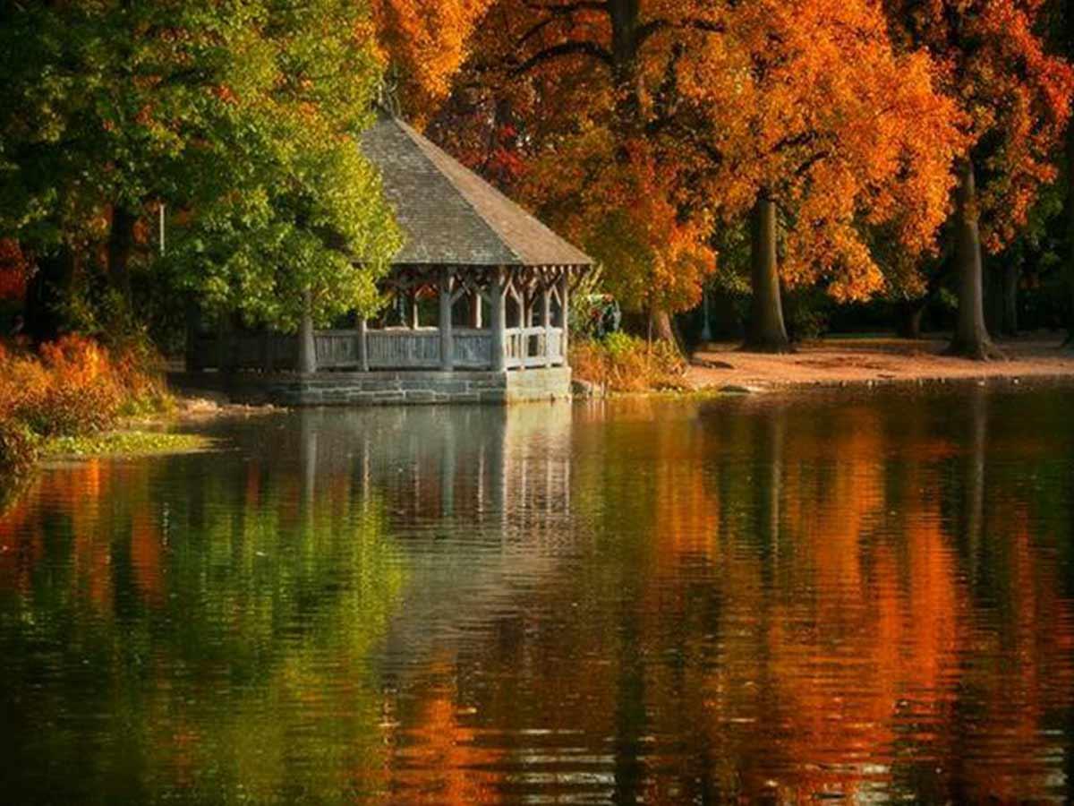 drevený altánok v náručí jesenných stromov
