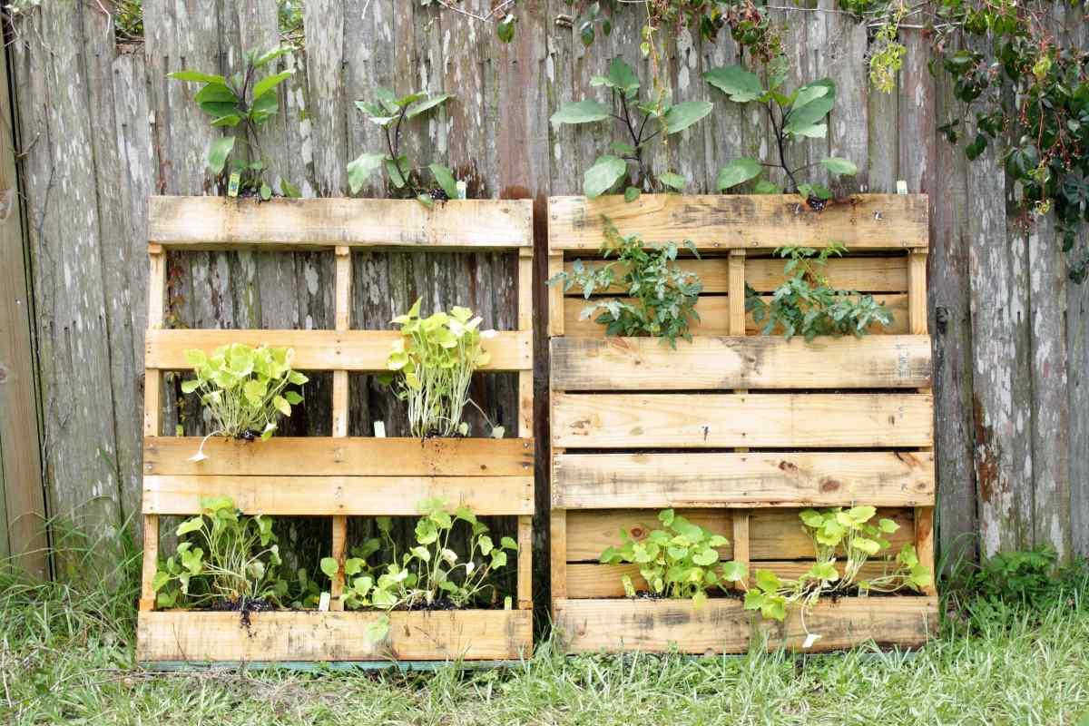 vertikálna záhradka v drevených paletách