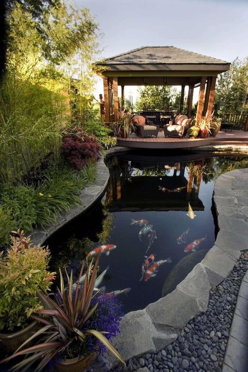 záhradné jazierko s rybami pri altánku