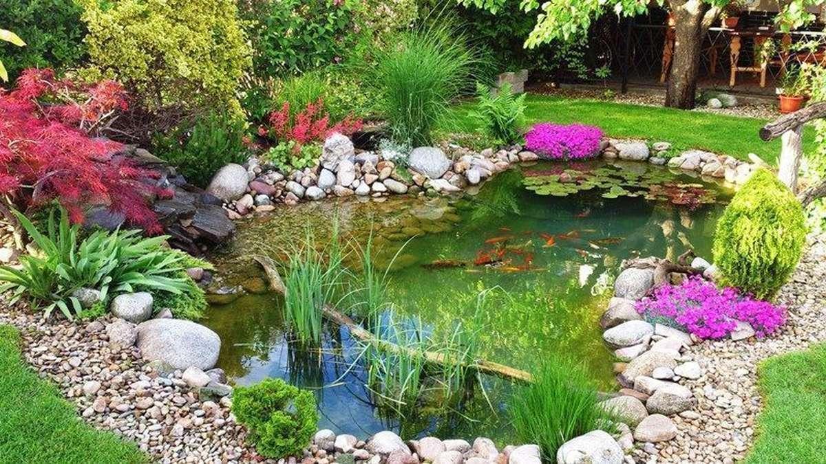 záhradné jazierko s rybami