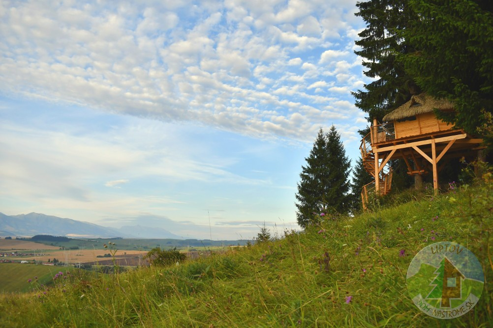 dom na strome na kraji lesa